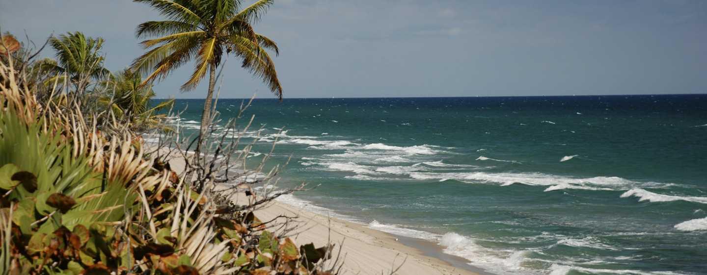 Bahia Mar Fort Lauderdale Beach - a DoubleTree by Hilton Hotel, USA– Strand