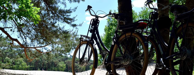 Hilton Royal Parc Soestduinen, Niederlande– Fahrradtour